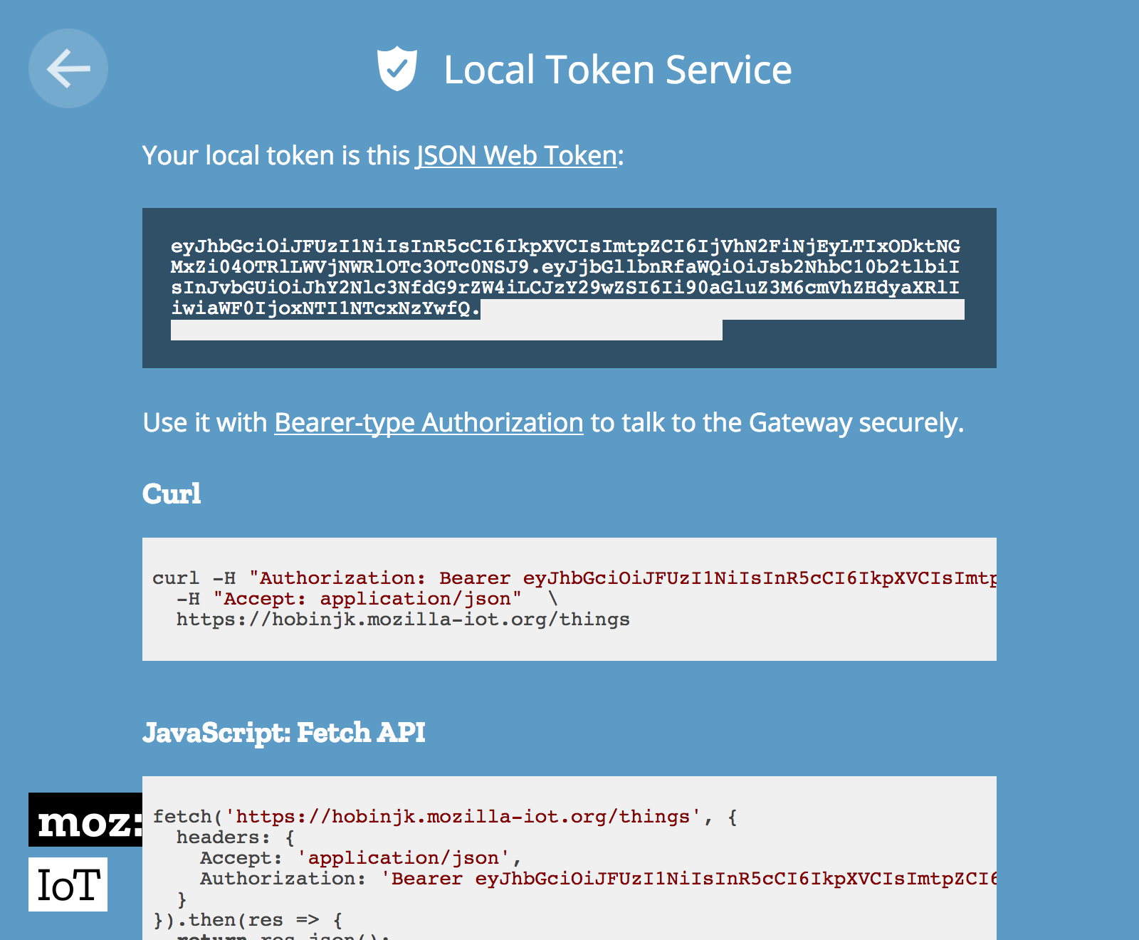 The Local Token Service