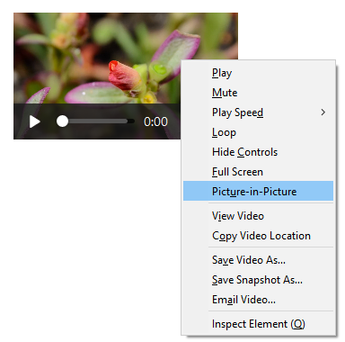 Showing the default context menu when opened on a video element, with the Picture-in-Picture menu item highlighted.